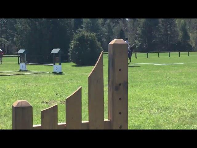 Darren Graziano Clinic   Ponies