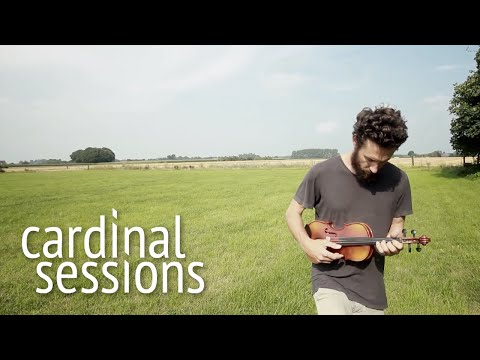 Alexi Murdoch - Golden Mountain - CARDINAL SESSIONS (Haldern Pop Special)