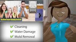 Flood and Water Damage Restoration Carpet Cleaning Alexandria VA