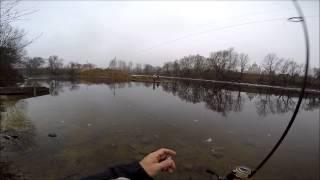 рыбалка в Добротворе