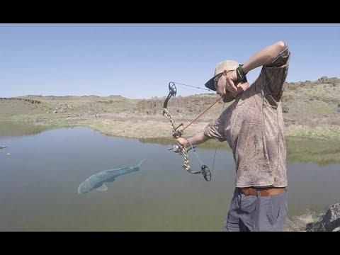 Pesca Con ARCO Y Flecha Parte 2   Caza Y Pesca