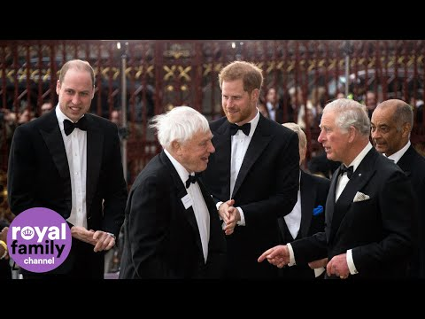 Princes Charles, William and Harry attend Sir David Attenborough documentary screening