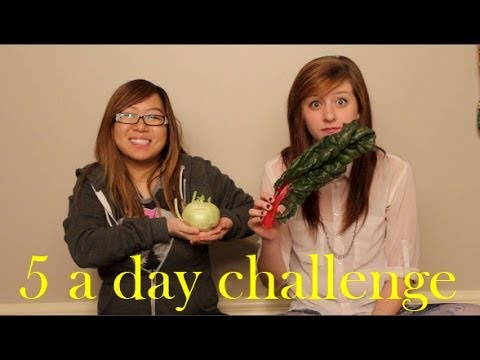5 A Day Challenge  AshlieMarie ASkylitAvenue