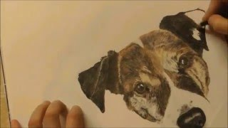 Drawing a Jackrussell - Time lapse