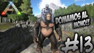 #13 DOMESTICAMOS AL MONO!! - ARK Survival Evolved
