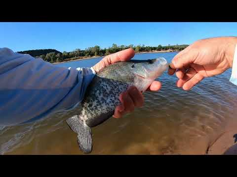Fly Fishing Oklahoma's Lake Eufaula Tailwater 10-13-19