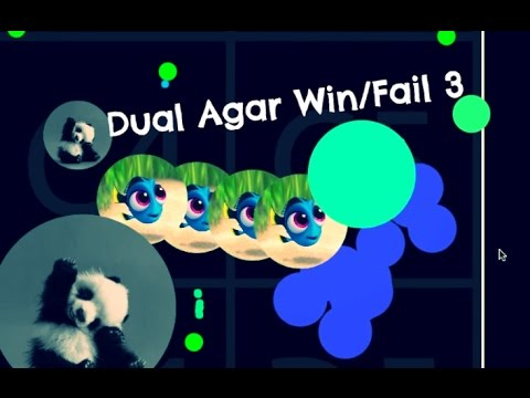 Dual Agar Win/Fail 3- Biggest Double Splits// Double Reverse-Inverse//Huge Pre-splits And More!