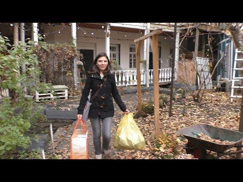 Yerevan, 04.12.18, Tu, Video-1, Pushkini 4
