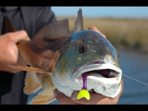 Versatility Of Fishing With Swim Baits