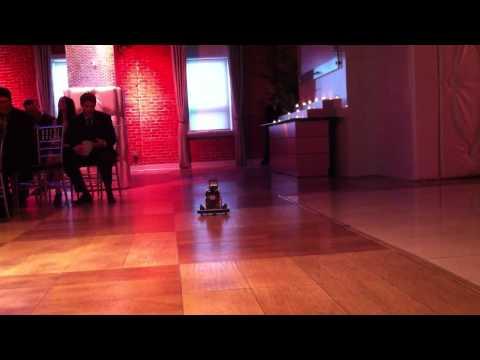 Robot Ringbearer
