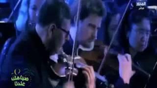 فيديو.. أوركسترا فيينا تعزف مقطوعة