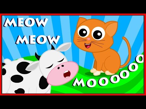 Animal Sound Sg  Learn Animals Nursery Rhymes For Kids Childrens Sg kids tv S02 EP052
