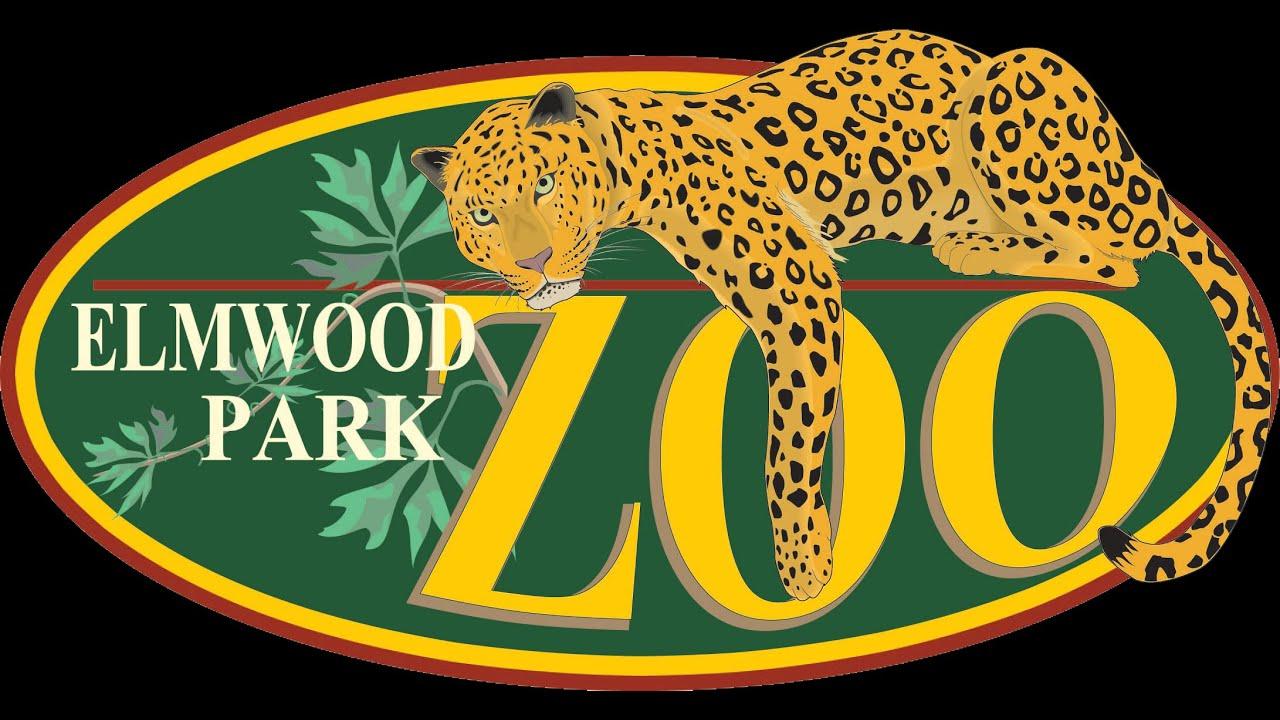 Elmwood park zoofari zipline course part 1 youtube for Ikea conshohocken pennsylvania