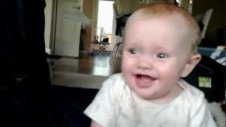 Sheep noises make baby laugh hysterically