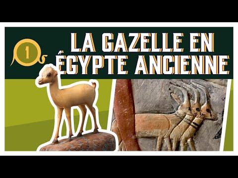 DADH #1 - La GAZELLE en Égypte Ancienne