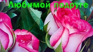 Поздравление любимой подруге на день рождения - Виртуальная открытка Zoobe Пчелка Майя