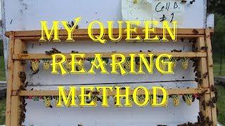 My Queen Rearing Method