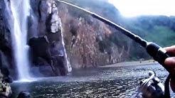 La tâte rivière du mât et cuillère rivière sainte Suzanne