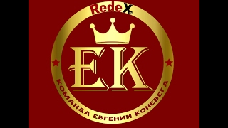 REDE X RED LTD  Презентация Евгения Коневега 14 02 17