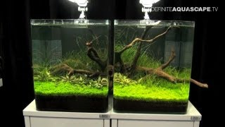 Aquascaping - The Art of the Planted Aquarium 2013 Nano pt.5