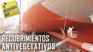ICTRQ: Recubrimientos Antivegetativos