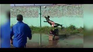 В Реале потасовка (!!!) после матча с ЦСКА...