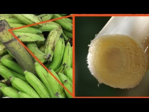 banana stem : Nutritional Value and Applications