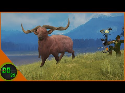Bow Hunting Giant Feral Goats in New Zealand! Call Of The Wild