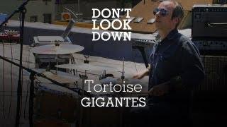Tortoise - Gigantes - Don
