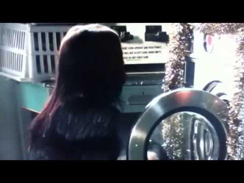 eastenders:-lauren-apologises-to-lucy