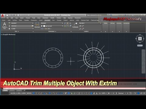 AutoCAD Trim Multiple Object With Extrim | Tips & Trick