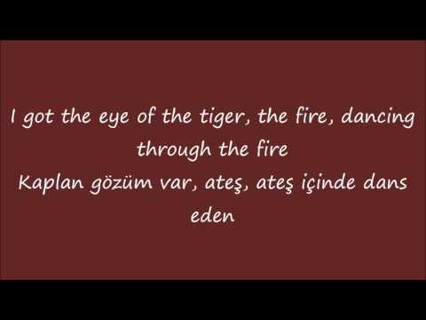 Katy Perry-Roar Lyrics+Türkçe Çeviri