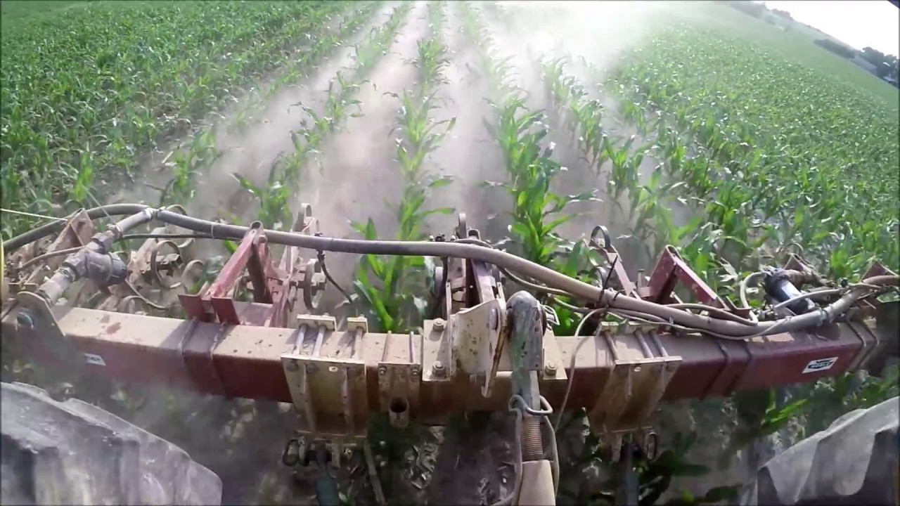 Side Dressing Corn My Dust Storm Youtube
