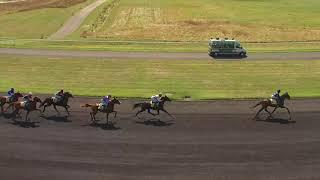 Vidéo de la course PMU PRIX CENERI FORCINAL