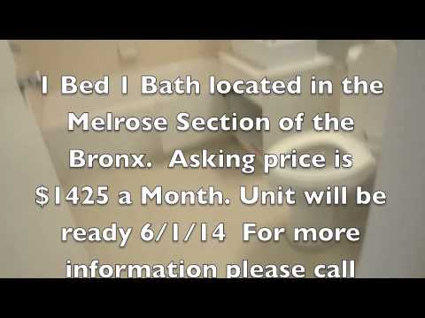 1 Bed 1 Bath located  in the Melrose Section of the Bronx with terrace