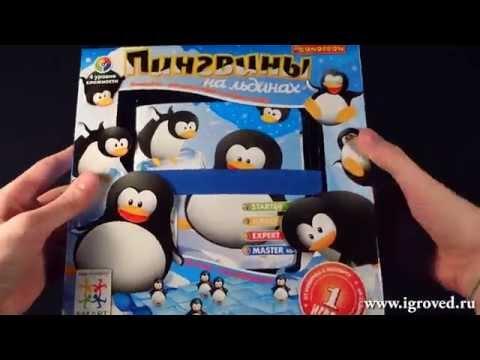 Пингвины на льдинах....
