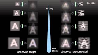 Total Variation Approach for Customizing Imagery to Improve Visual Acuity, TOG 2015 (SIGGRAPH)