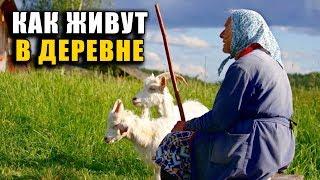 Как живут в РОССИЙСКОЙ ДЕРЕВНЕ. Работа, быт, дороги и разруха
