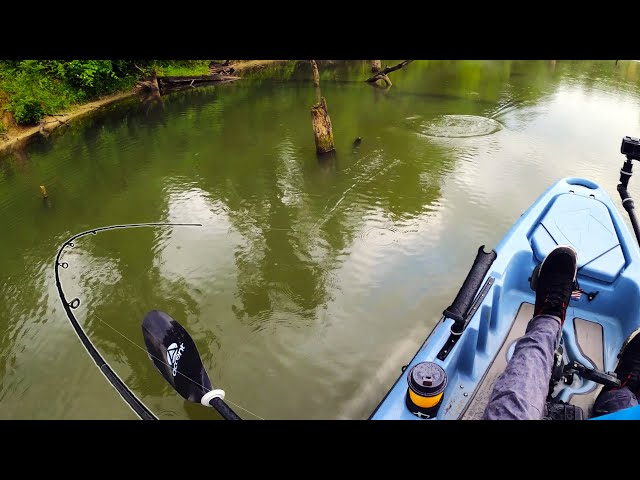 Topwater Fishing an Abandoned Quarry from the 1800s | Indiana | Field Trips with Robert Field