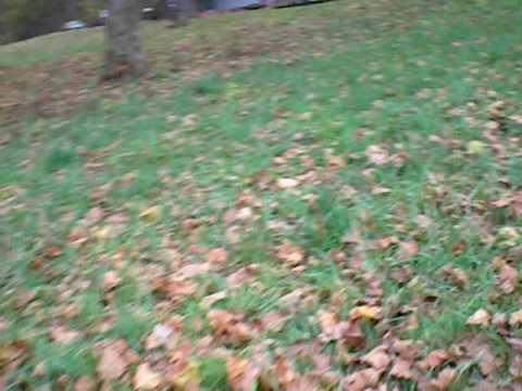 Grass leafy slope SV650