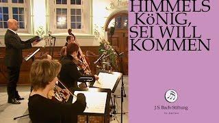J.S. Bach - Cantata BWV 182 Himmelskönig, sei willkommen | 4 Aria (J. S. Bach Foundation)
