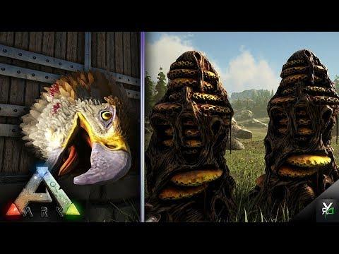 BEE HIVES EVERYWHERE!!- Xbox Ragnarok EP 36