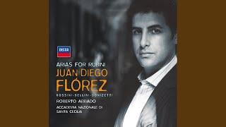 Donizetti: Marino Falliero / Act 1 - Ma un solo conforto