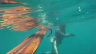 Podvodni ribolov - skaram 3