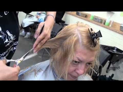HAIRCUTTING; soft layers, point cut, texturizing, blunt cut, too