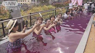 """きょう解禁""""ボージョレ"""" 温泉ではワイン投入も!(2020年11月19日) - YouTube"""