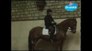 Dressage : Leçon de dressage: l'épaule en dedans - Sport - Equitation