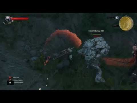Most Overpowered Witcher  Build