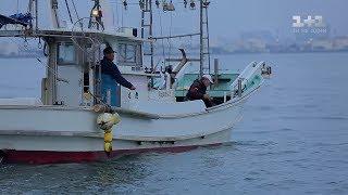 Япония   смертоносная рыба фугу и город роботов. Мир наизнанку   2 серия 9 сезон