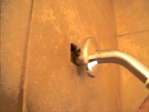 Loose Shower Stem.AVI - YouTube